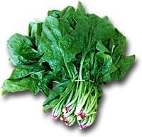spinaci, alimento ricco di ferro